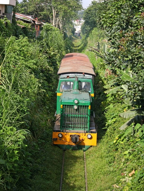 By a nostalgic train