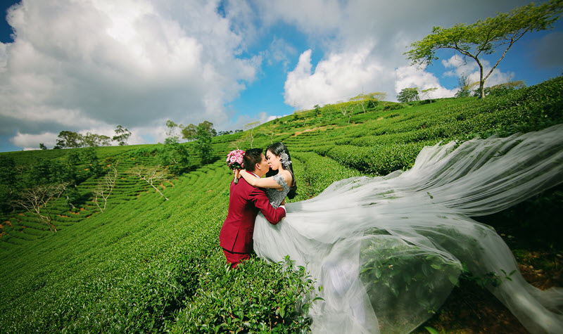 Capture the best moments at the tea hill