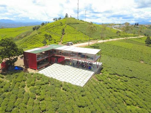 Cau Dat Farm cafe