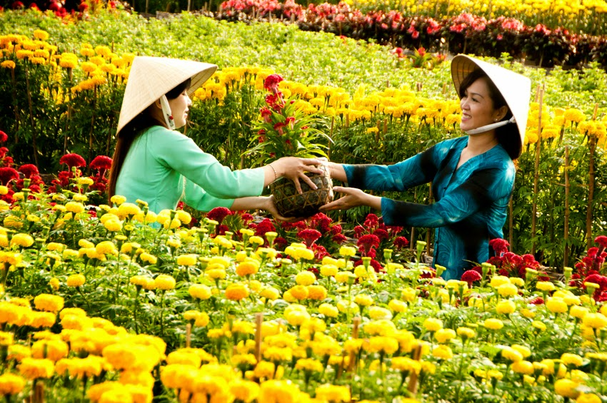 History of the flower village