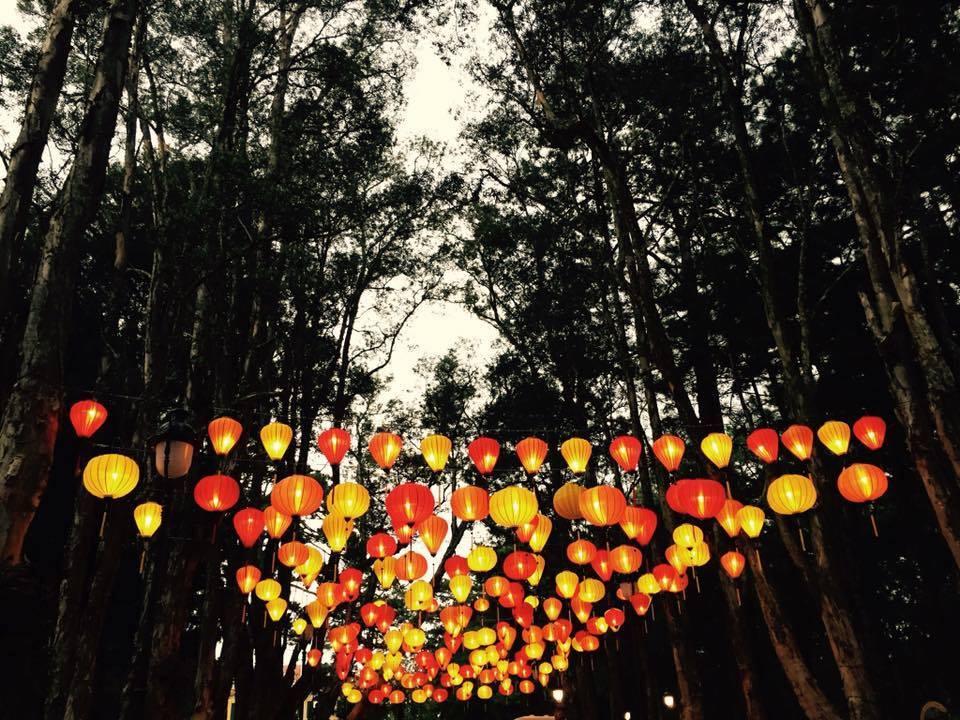 Lantern path at night