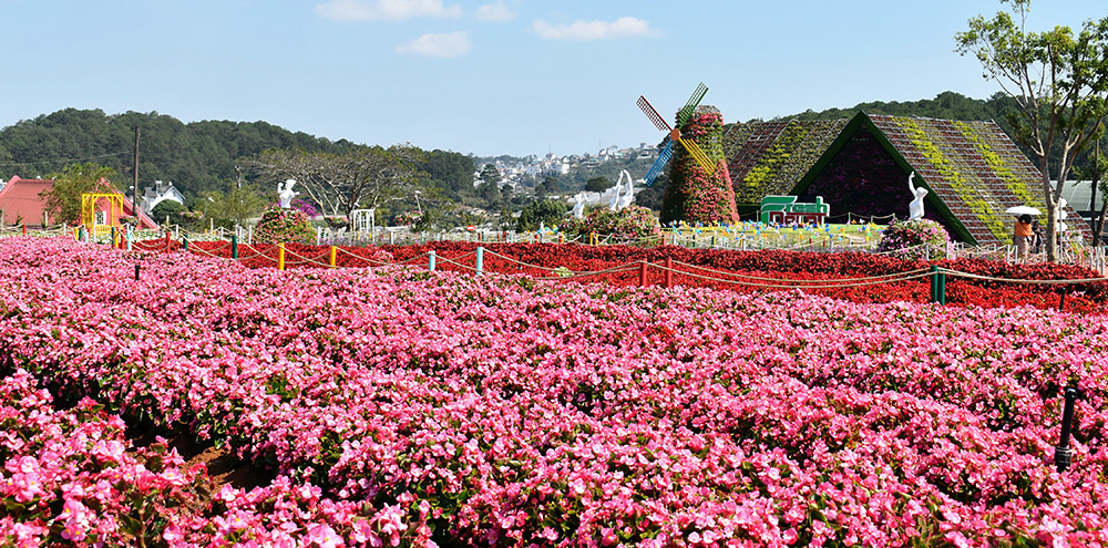 Van Thanh Flower Village